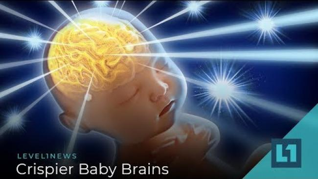 Embedded thumbnail for Level1 News March 1 2019: Crispier Baby Brains
