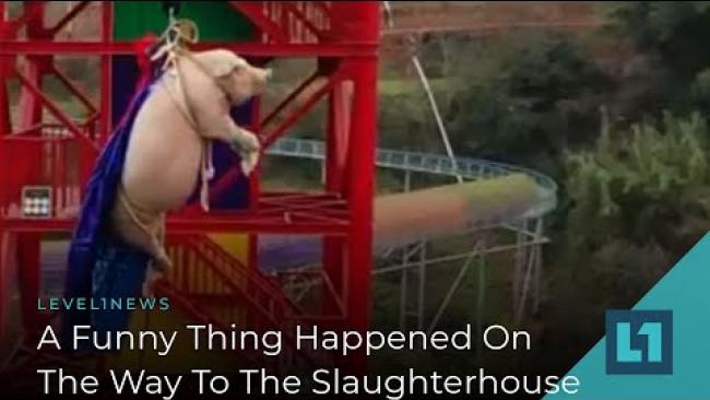 Embedded thumbnail for Level1 News January 31 2020: A Funny Thing Happened on the Way to the Slaughterhouse