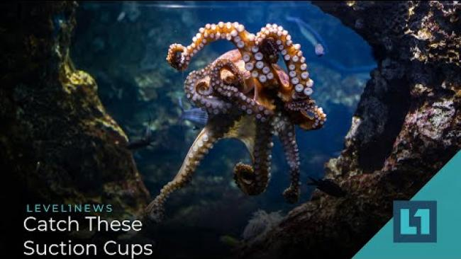 Embedded thumbnail for Level1 News April 9 2021: Catch These Suction Cups